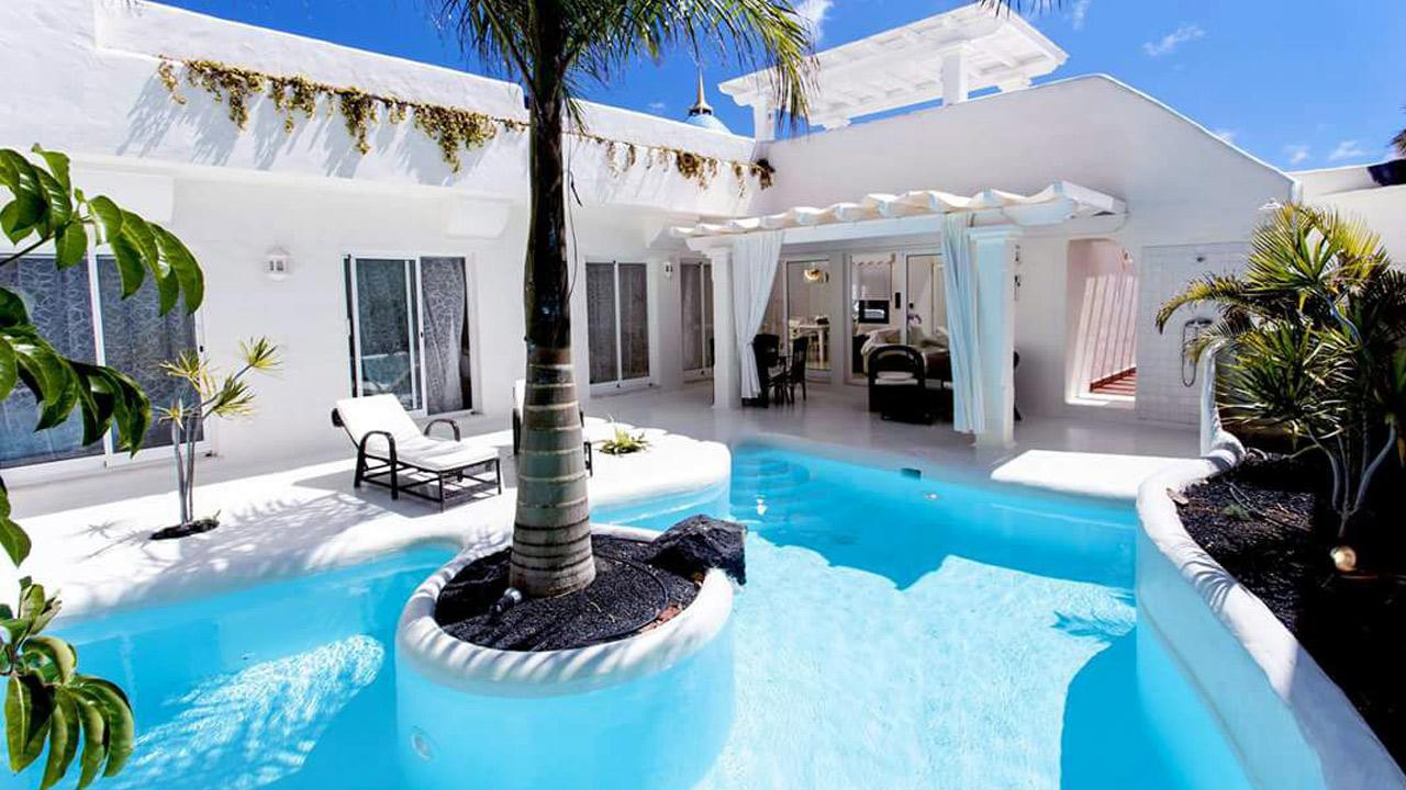 piscina-palmera
